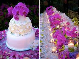the best wedding planner best wedding planners cabo weddings destination weddings in