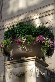 874 best landscaping with planters and containers images on