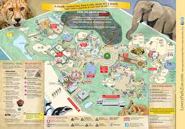 Tampa Florida Usa Map by Lowry Park Zoo Coupons Lowry Park Zoo Map