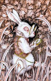 1672 alice wonderland images rabbit hole