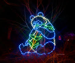 Washington Dc Zoo Lights by Zoo Lights Hours 28 Images Zoolights Gives Lincoln Park Zoo A