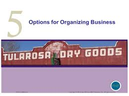 organizing business fhf ferrell hirt ferrell m business 2 nd edition ppt download