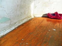 Laminate Floor Peeling Lead In Drinking Water Poses Danger For Children Pregnant Women