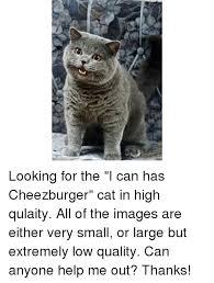 Meme Cheezburger - 25 best memes about i can has cheezburger cat i can has