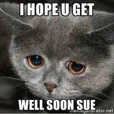 Funny Get Well Soon Memes - i hope u get well soon sue sad cute cat meme generator