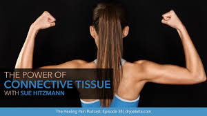 the power of connective tissue with sue hitzmann
