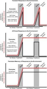 epigenetics beyond chromatin modifications and complex genetic