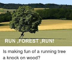 Run Forrest Run Meme - run forest run is making fun of a running tree a knock on wood