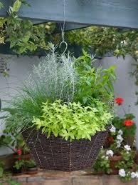 planting a hanging basket hgtv
