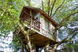 I Have Built A Treehouse - foster huntington is living your most whimsical treehouse dreams