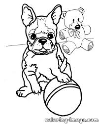 puppy boston terrier with toys free coloring pages for kids