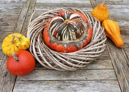 free photo food ornamental fruit autumn free image on pixabay