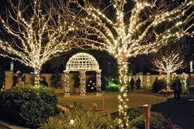 christmas cheap christmas lights staggering youtube led outdoor