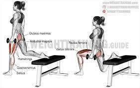dumbbell one leg split squat exercise instructions and video