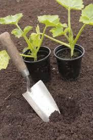 Garden Soil Types - soil types edinburgh garden