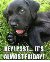 Almost Friday Meme - hey psst its almost friday meme on sizzle