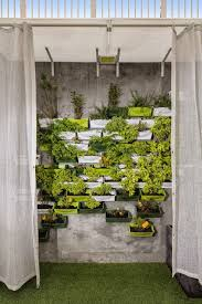 wall mounted herb garden architect gives his hong kong apartment eco friendly makeover