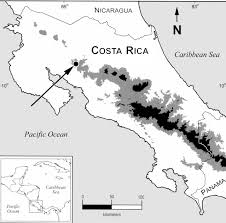 Black And White Map Of Central America by New Costa Rican Shrew Species Named From A Single Specimen Found