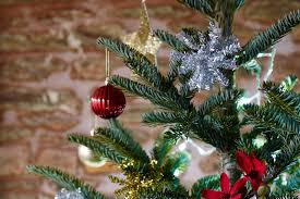avoid christmas tree needle drop gardenersworld com