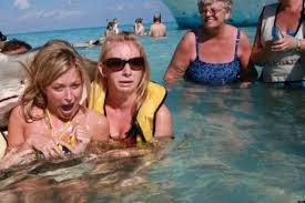 Stingray Meme - stingray photobomb the story behind the viral photo sensation