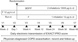 Double Blind Research A Trial Of Beclomethasone Formoterol In Copd Using Exact Pro To