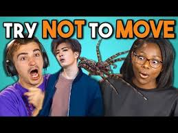 Challenge React College React To Try Not To Move Challenge 2