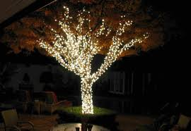 outdoor tree lights solar powered dayri me