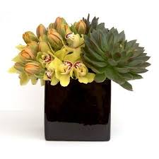 Flowers For Men - flower delivery nyc flowers for men luxury design by gabriela