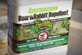 Rabbit Repellent For Gardens by It U0027s Not Work It U0027s Gardening Product Review Liquid Fence Deer
