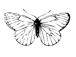 beautiful butterfly coloring pages for kids u2014 fitfru style