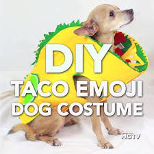 Halloween Costumes Dogs 25 Diy Dog Costumes Ideas Dog Halloween
