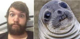 Awkward Seal Meme - so i m a fluffy awkward seal imgur