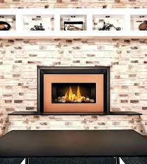 natural gas fireplace inserts reviews fireplace tools target gas fireplace insert reviews natural gas fireplace inserts