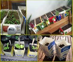Recycling Garden Ideas 76 Best Recycling Ideas For Milk Cartons In The Garden Images On