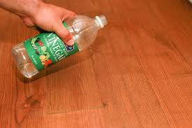 how to remove pet stains on hardwood floors hunker
