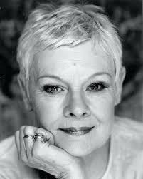 how to get judi dench hairstyle unique judi dench hairstyles judi dench hair judi dench hairstyle