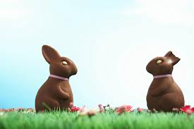 chocolate bunny ears which part of the chocolate bunny do you eat ears or