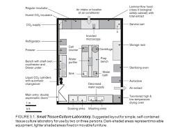 Plant Tissue Culture Lab Design Layout