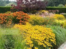 gap gardens planting of late summer perennials and ornamental