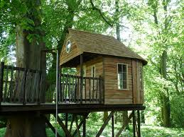 Owls Tree House  Blue Forest Treehouses