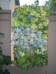 40 best living wall planters images on pinterest vertical