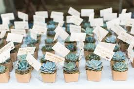 succulent wedding favors 8 summer wedding favors that are totally adorable