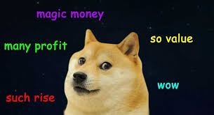 Dogecoin Meme - these are the 12 cryptocurrencies fintech experts say will soar by