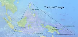Map Of Coral Reefs The Coral Triangle Asian Development Bank