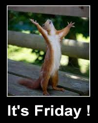 Its Friday Meme Funny - funny squirrel its friday meme bajiroo com