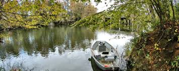 riverbanks botanical garden saluda gardens columbia sc realtor listing agent