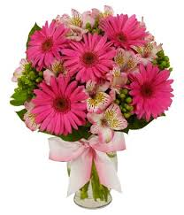 gerbera bouquet playful pink gerbera bouquet at from you flowers