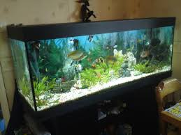 juwel 400 aquarium stand 5 ft complete fish tank setup 400li