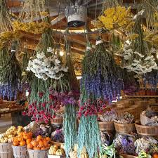 home decoration stores garden center farm market wallingford farm kennebunk maine