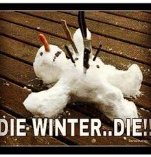Cold Weather Meme - funniest weather memes to get you through the cold months